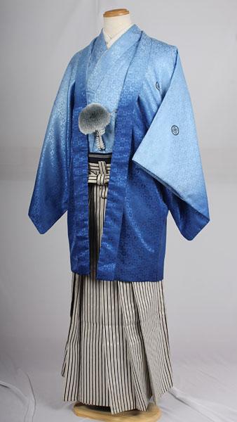 基本セットの縞袴レンタル紋付成人式用貸衣装水色グラデーション着姿