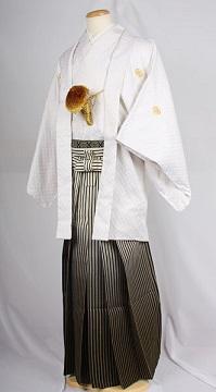 オプション袴黒金縞ぼかしレンタル紋付成人式用貸衣装白刺し子紋付袴