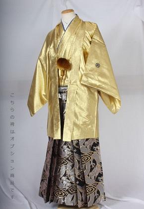HG42銀龍柄レンタル紋付成人式用貸衣装金一色着姿